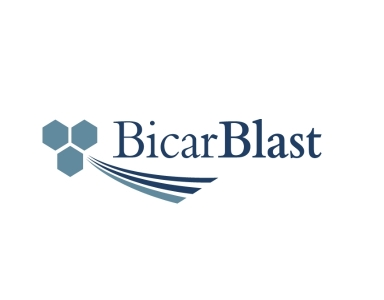 BicarBlast B.V.